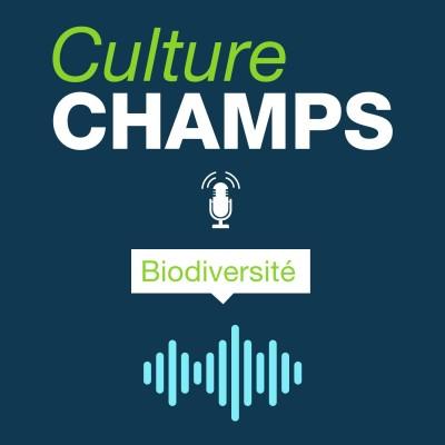 #8 – Biodiversité cover