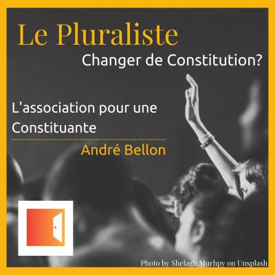 Changer de Constitution ? L'association pour une Constituante - André Bellon cover