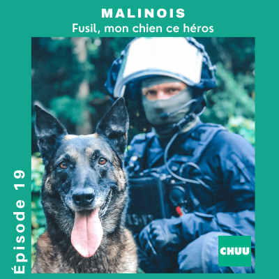 # 19 - MALINOIS - Fusil, mon chien ce héros. cover