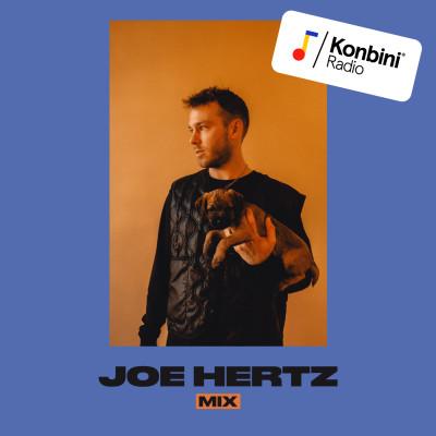 'No Bad Vibes' Mix - Joe Hertz cover