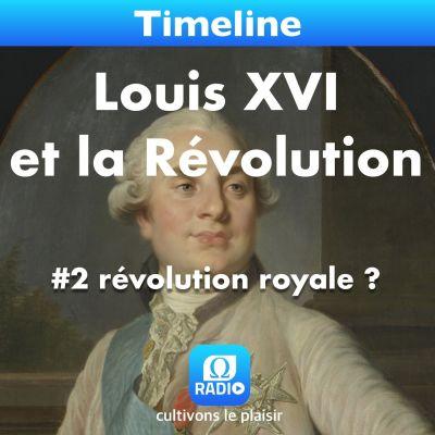 image Louis XVI et la Révolution #2 révolution royale ?