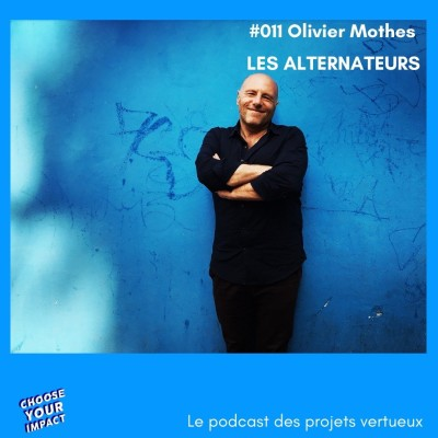 011 Olivier Mothes - LES ALTERNATEURS ou comment booster l'apprentissage et la formation professionnelle cover