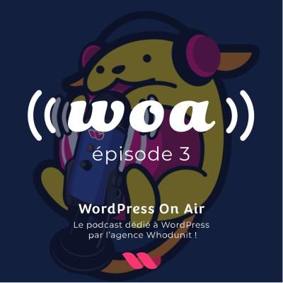WOA! (WordPress On Air) #3 prévisions 2020, Polylang, astuce et rendez-vous communauté. cover
