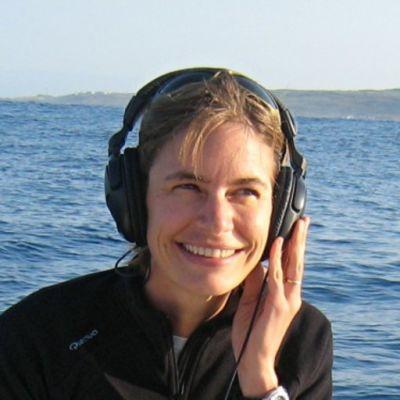 Suivre la migration des baleines jusqu'en Antarctique cover
