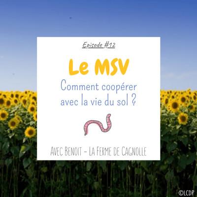 #12 Le MSV : comment coopérer avec la vie du sol ? - Ferme de Cagnolle cover