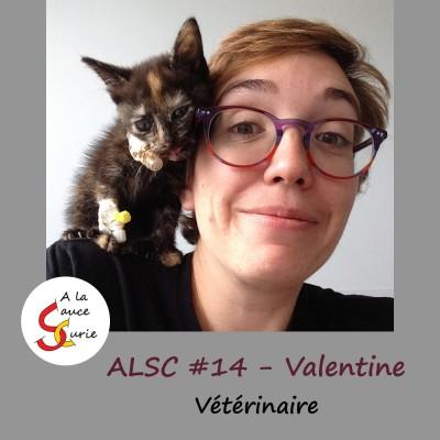 Valentine, vétérinaire, aimer les animaux et l'humain cover