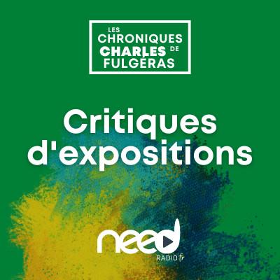 Critiques d'expositions – Le Musée du Plâtre podcast cover