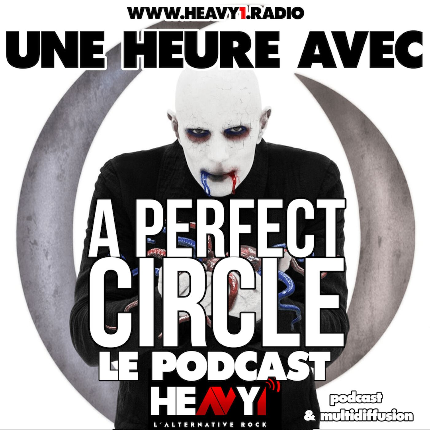 Une heure avec... A Perfect Circle