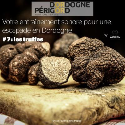 # 7 : les truffes cover