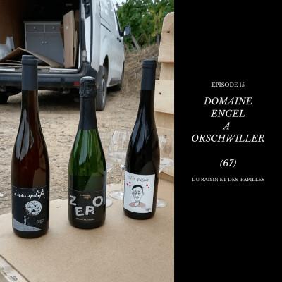 Episode 15: Domaine Engel à Orschwiller (67) cover