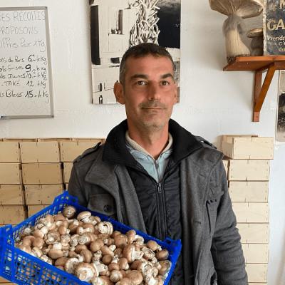 Les caves champignonnières des Roches avec Julien Delalande cover