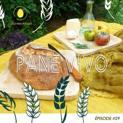 #29 Pane Vivo cover