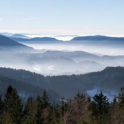 Les Vosges, destination 100% nature cover