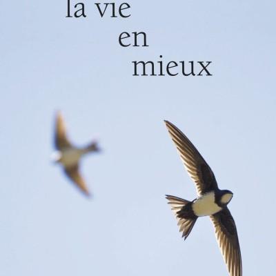La Vie en mieux, d'Anna Gavalda   Par Valentine Féau cover