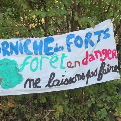 image A Romainville, on détruit la forêt pour construire une base de loisirs