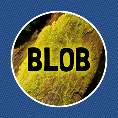 Qu'est-ce qu'un blob ? cover