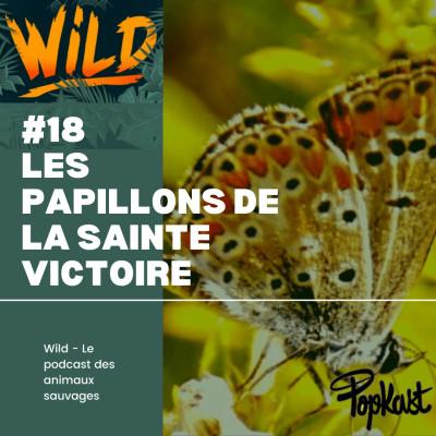 Wild #18 - Les papillons de la Sainte-Victoire cover