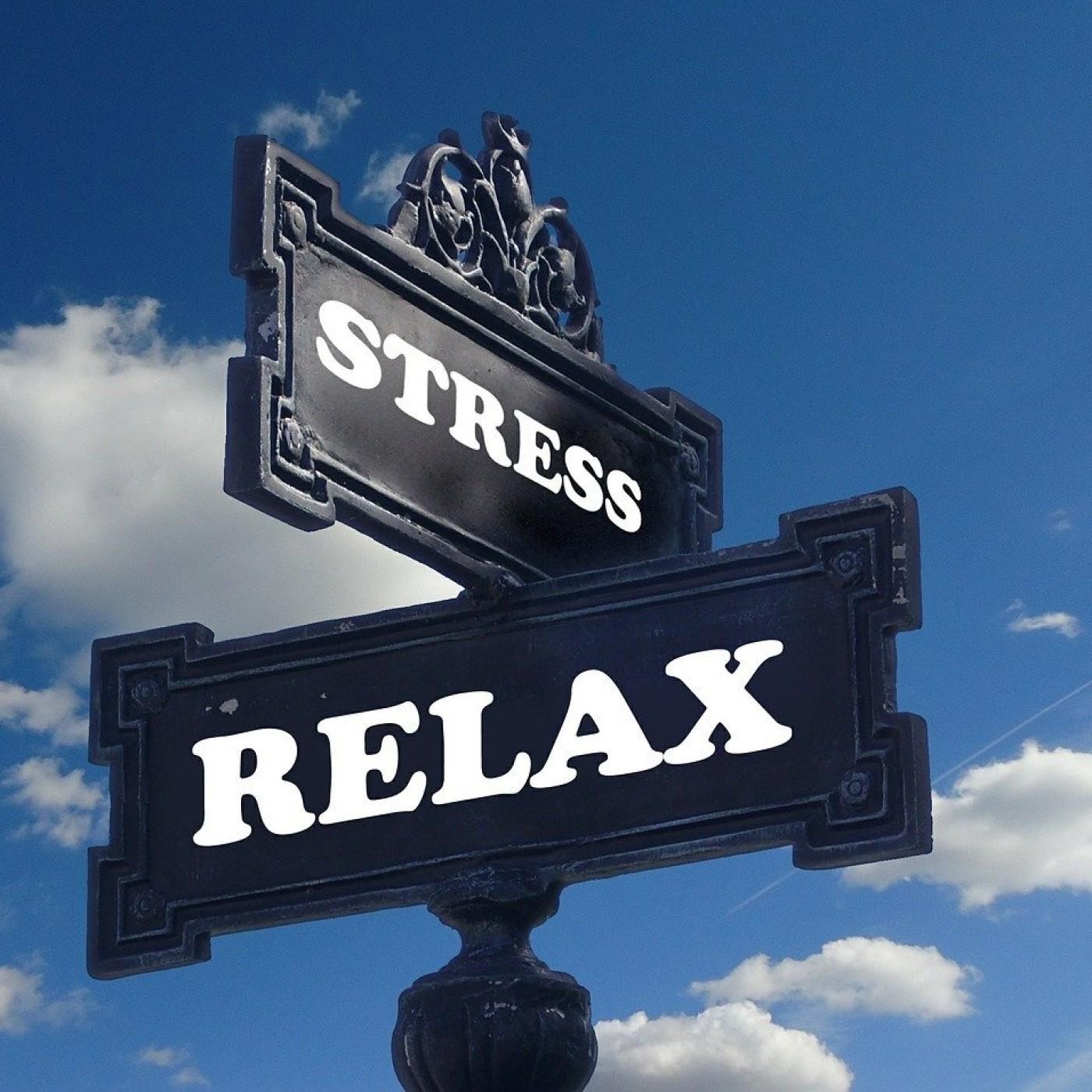 Comment lutter efficacement contre le stress ?