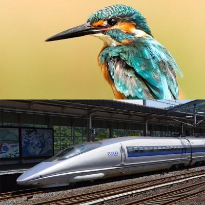 S01E02 Le train-train de Martin cover