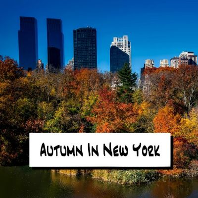 image Autumn In New York
