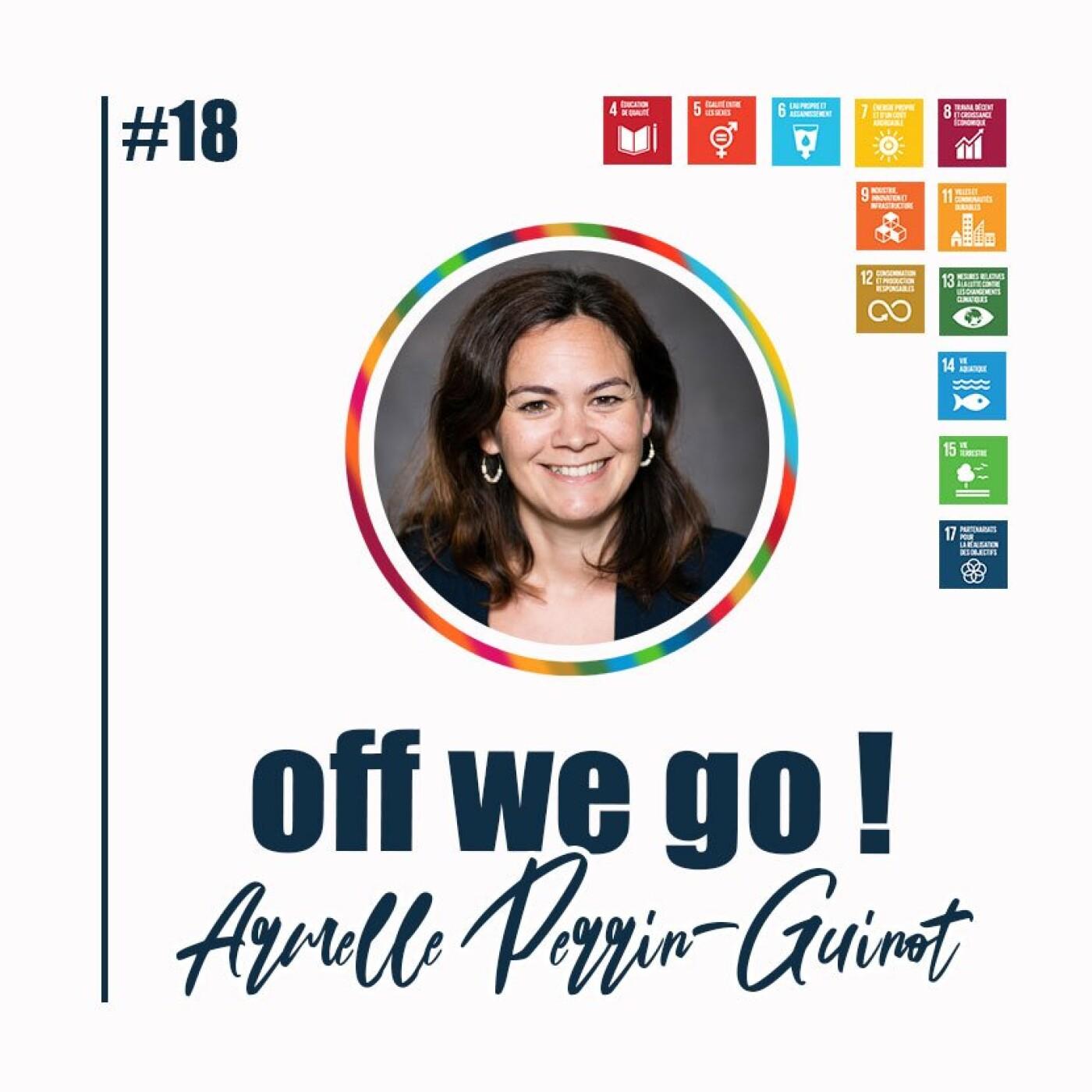 La performance plurielle au service de la transition écologique - Armelle Perrin-Guinot
