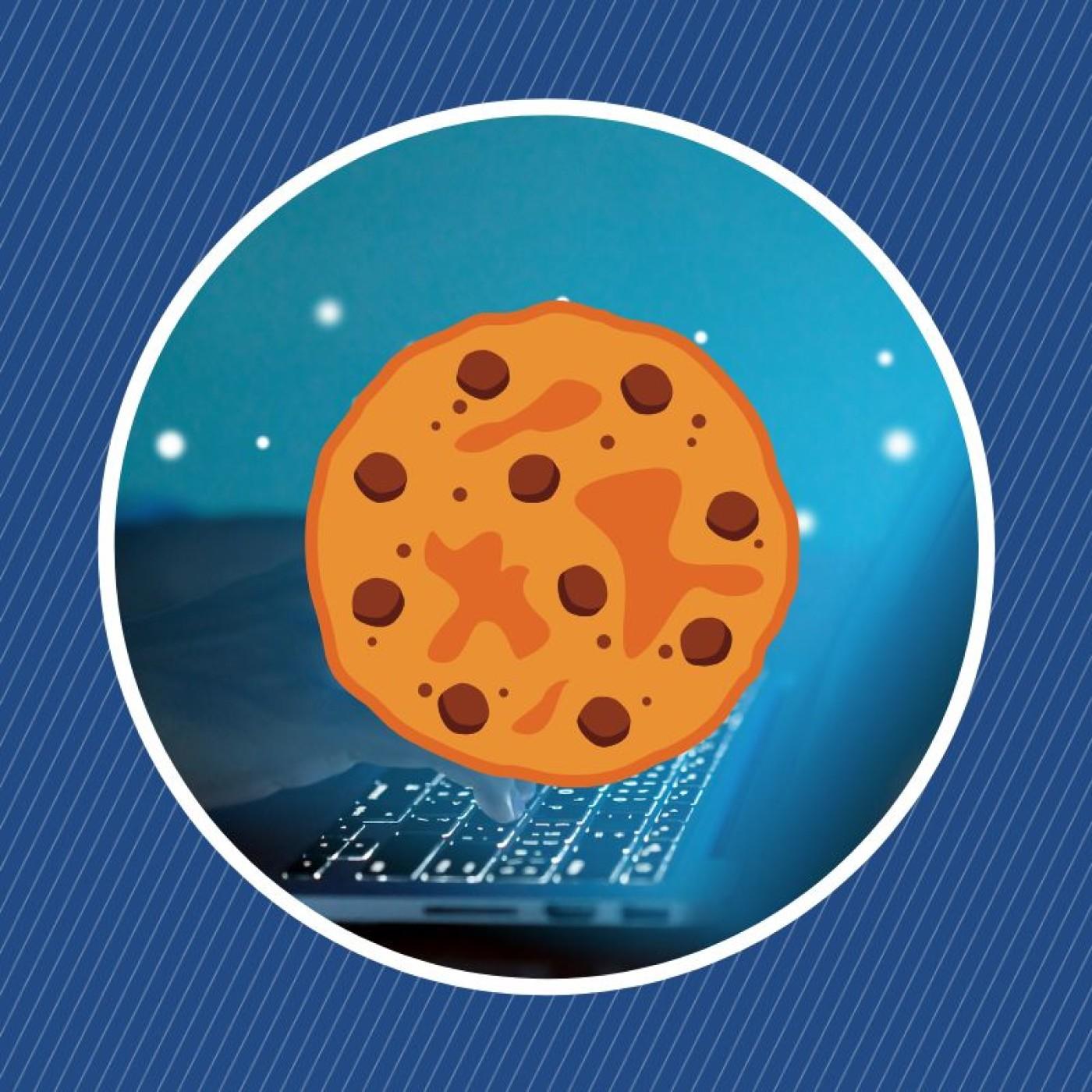 Qu'est-ce qu'un cookie (informatique) ?