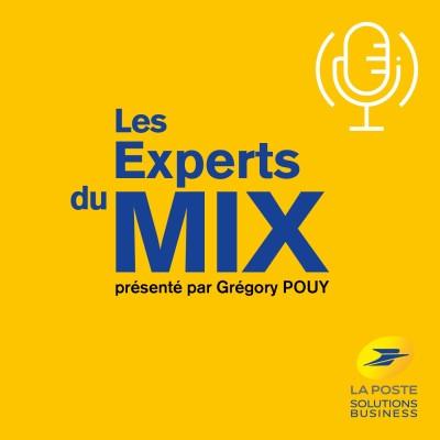 Les Experts du Mix cover