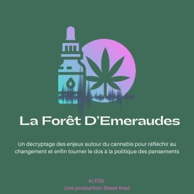 008 - Mieux comprendre 100 ans d'approche répressive du cannabis en France avec Benjamin du cabinet Augur Associates cover