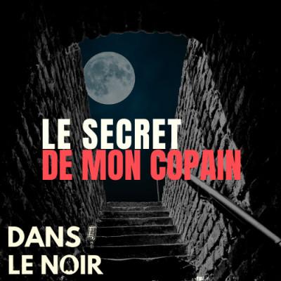 Le Secret De Mon Copain cover