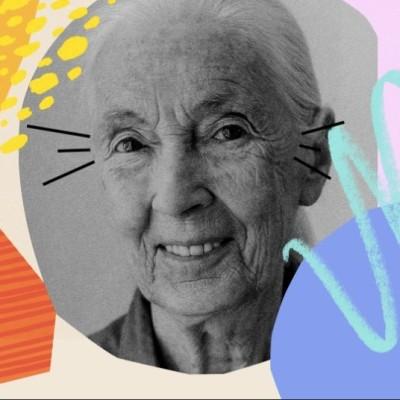 Portrait - Jane Goodall, primatologue cover