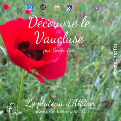 Le plateau d'Albion - Découvre le Vaucluse #ResteChezToi cover