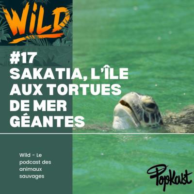 Wild #17 - Sakatia, l'île aux tortues de mer géantes cover
