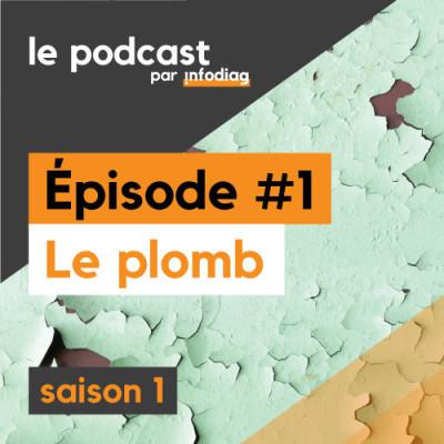 Le Plomb - Les Diagnostics Immobiliers #1 cover