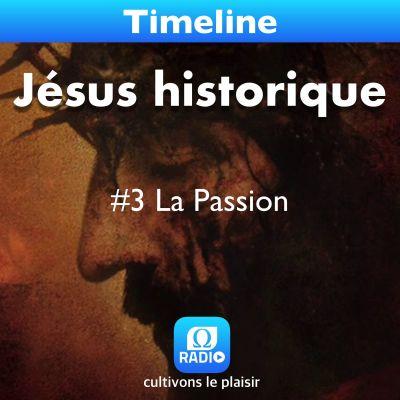 image Jésus historique #3 La Passion