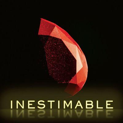 image Inestimable - 01 - Découvrir le véritable trésor - Fabien Boinet