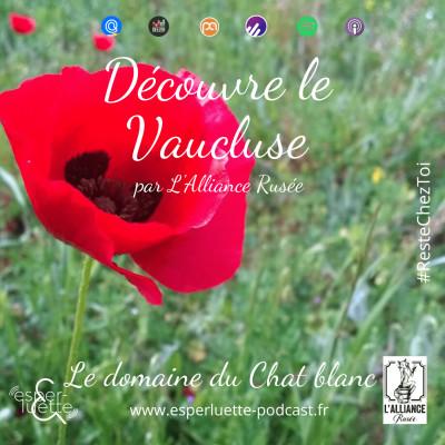 Le Domaine du Chat Blanc par L'Alliance Rusée - Découvre le Vaucluse #ResteChezToi cover