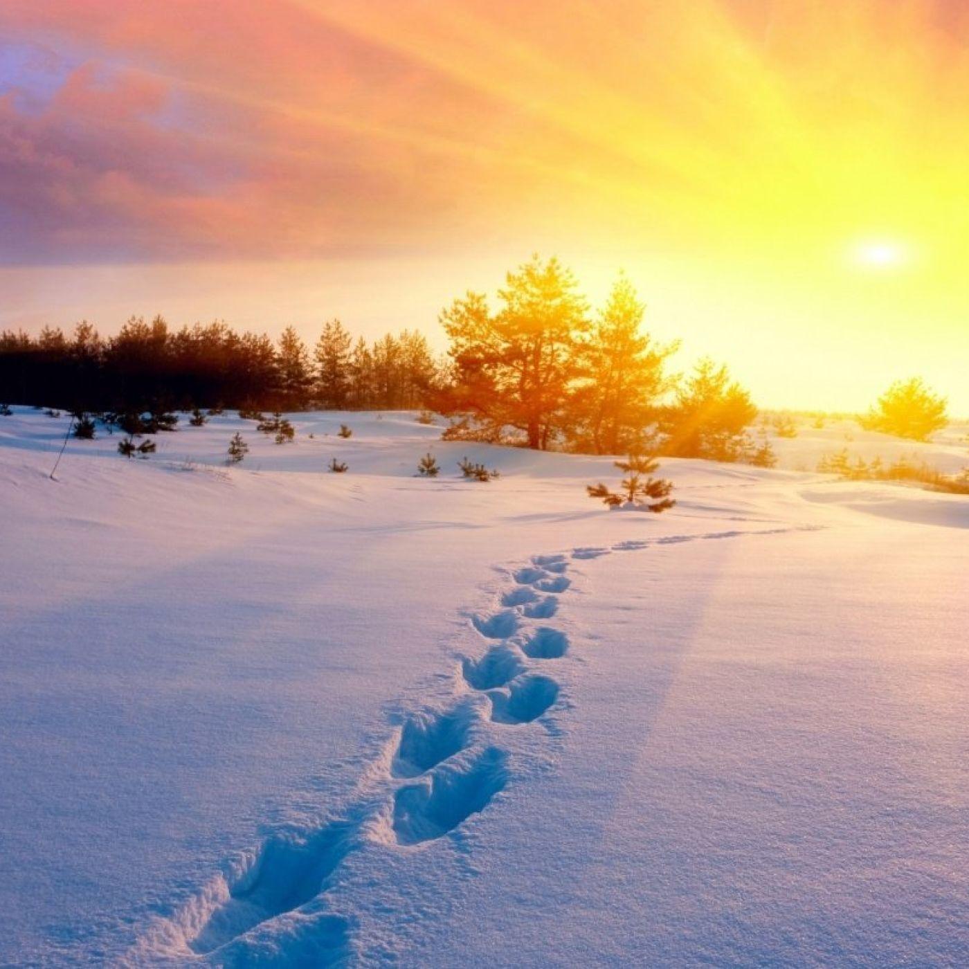 Walking in Snow (ASMR / Sounds)