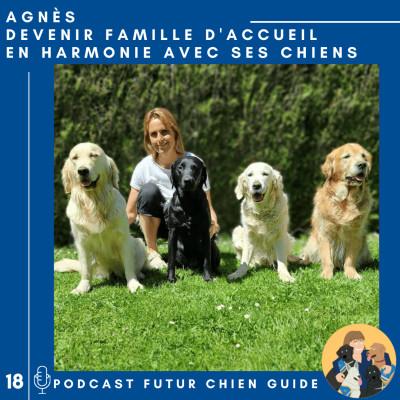 🦮18 - Agnès - Devenir famille d'accueil en harmonie avec ses chiens cover