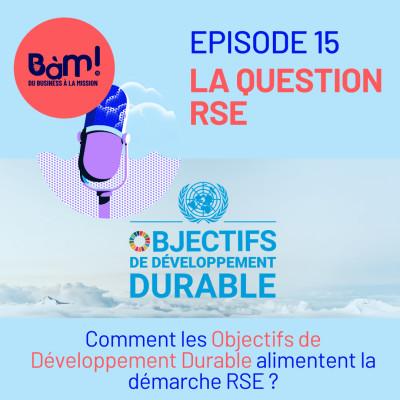 #15 La Question RSE – Comment les Objectifs de Développement Durable alimentent la démarche RSE? cover