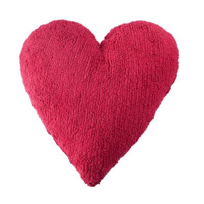 image Comment garder son coeur bien disposé - Fabien Boinet