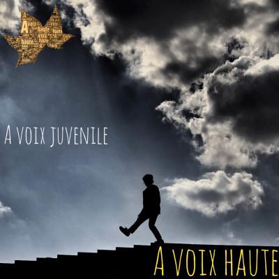 A Voix Juvénile - Le prince et le Voleur - Clément Fouquet CM2 - Yannick Debain cover
