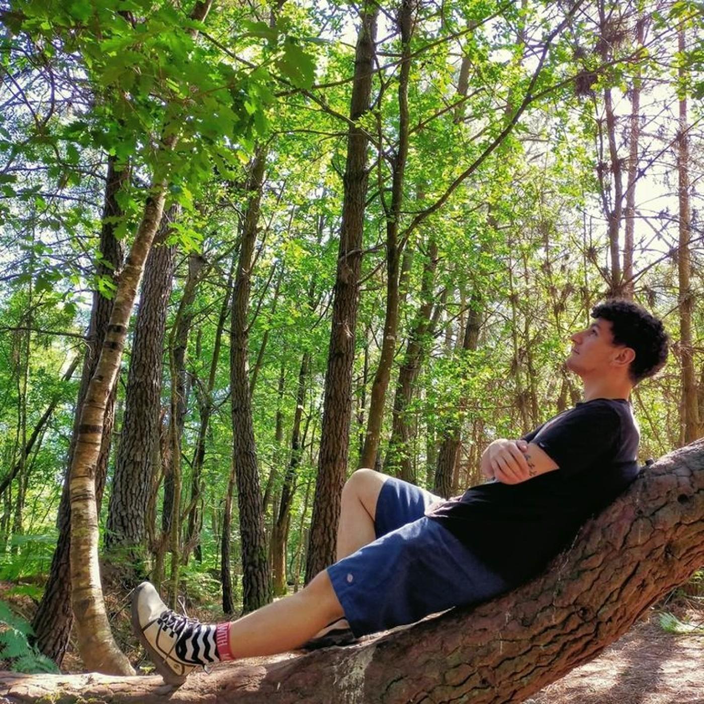 Épisode 5 - L'histoire de la mythique forêt de Brocéliande, ses légendes et faits paranormaux