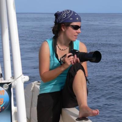Connaître les populations de dauphins côtiers de La Réunion cover