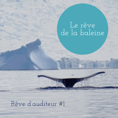Rêve d'auditeur #1 :  Le rêve de la baleine cover
