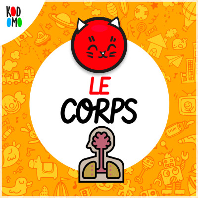 image C-comme Corps Humain