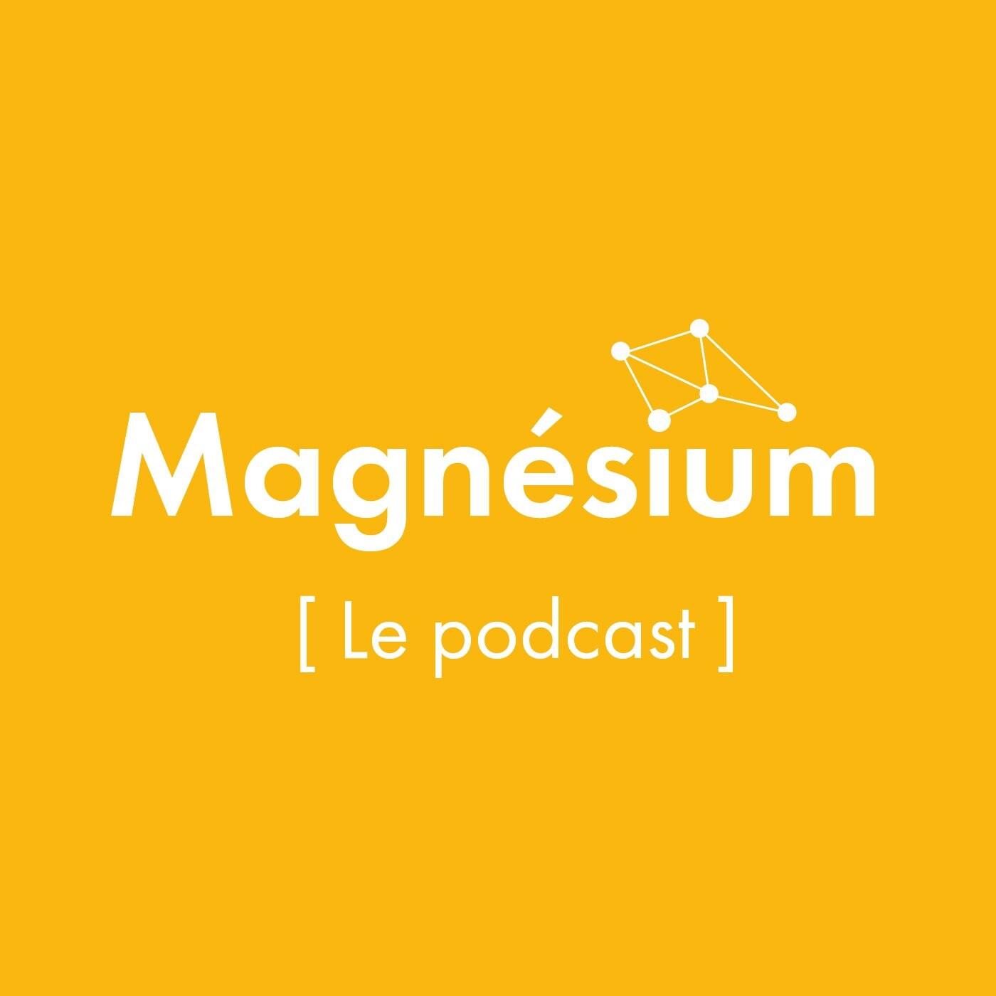#magnesium 02 - Serge Le Boulch, Président et Fondateur de Récipro Cité pour l'habitat intergénérationnel