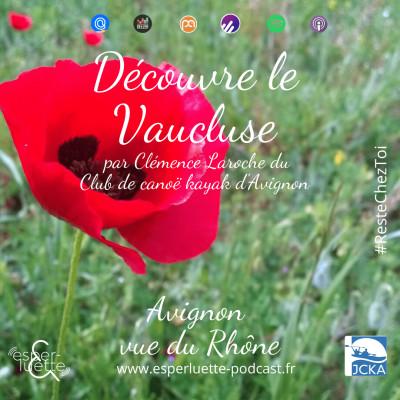 Avignon vue du  Rhône par Clémence - Découvre le Vaucluse #ResteChezToi cover