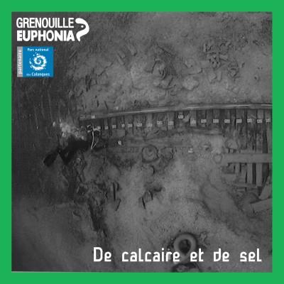 De calcaire et de sel | L'épave antique de Tiboulen de Maïre cover