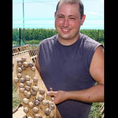 Ebersheim : les escargots, un produit local d'une grande qualité cover