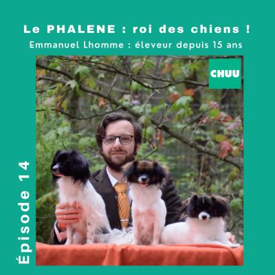 #14 - Le Phalène, un chien royal avec Emmanuel L'homme leur défenseur. cover